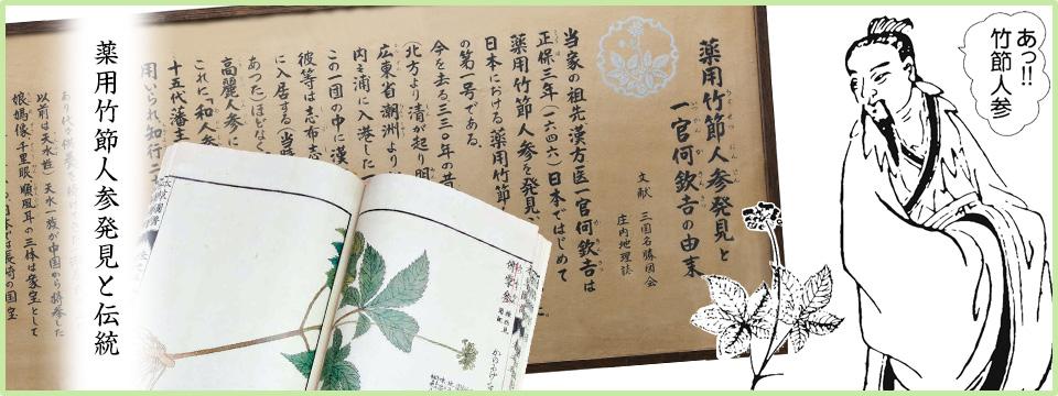 薬用竹節人参発見と伝統